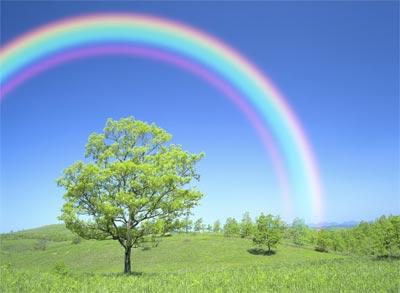 exp rainbow main Alasan Kenapa Hujan Memiliki Aroma Khas