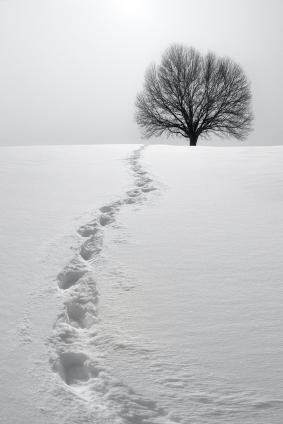 Tetaplah Berjalan